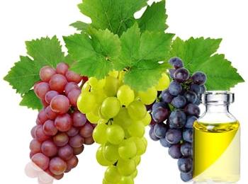 Особенности производства масла из виноградных косточек