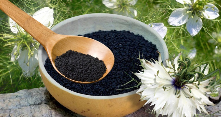 Применение черного тмина, полезные свойства и противопоказания