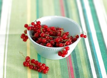Как выбрать и хранить красную смородину?