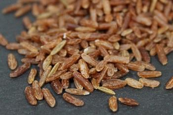 Использование бурого риса в косметологии и народной медицине