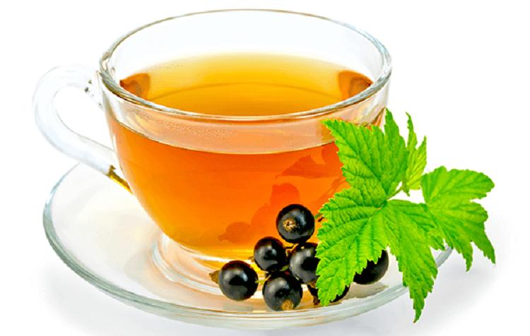 Как заваривать чай из листьев красной и черной смородины