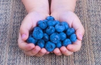 В чем заключаются полезные свойства черники для детей?