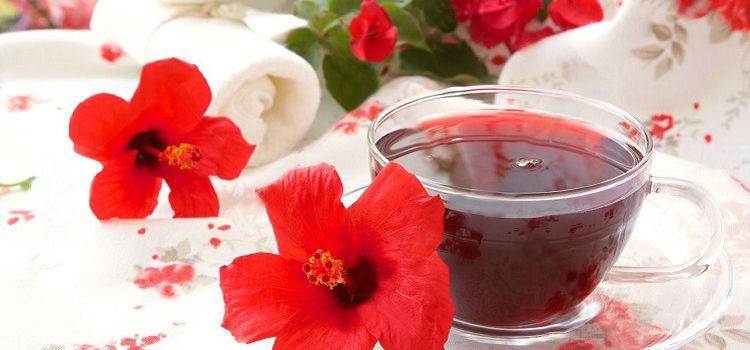 Чай каркаде - полезные свойства напитка, рецепт заваривания и противопоказания