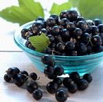 Чем полезна черная смородина - о ценных свойствах продукта для организма