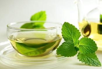 Какими целебными свойствами обладает мята и мятный чай