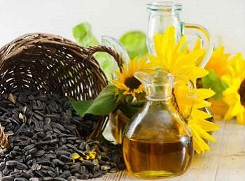 Состав и полезные свойства семечек подсолнуха - как правильно употреблять