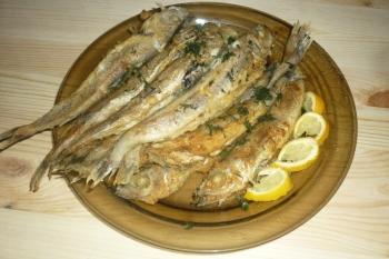 Польза и вред рыбы путассу, рецепты приготовления