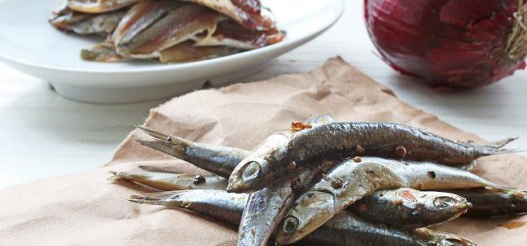 Анчоусы - что это такое и как приготовить полезный морепродукт