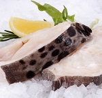 Полезные свойства рыбы зубатки и противопоказания к употреблению