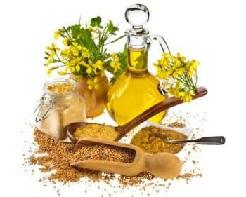 Состав рыжикового масла, польза и вред