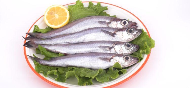 Рыба путассу: польза и вред для организма человека, кулинарные рецепты блюд