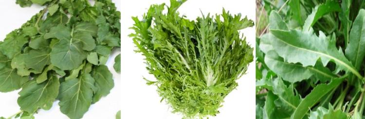 Польза, вред и свойства салата рукколы