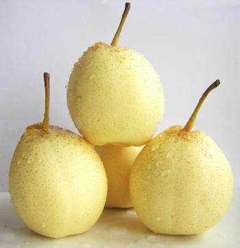 Китайская груша: ее польза и вред, полезные свойства для организма человека