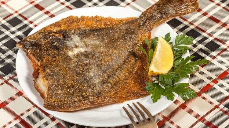 Чем полезна рыба камбала, полезные свойства для организма