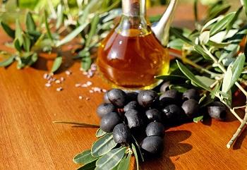 Маслины и применение плодов в народной медицине