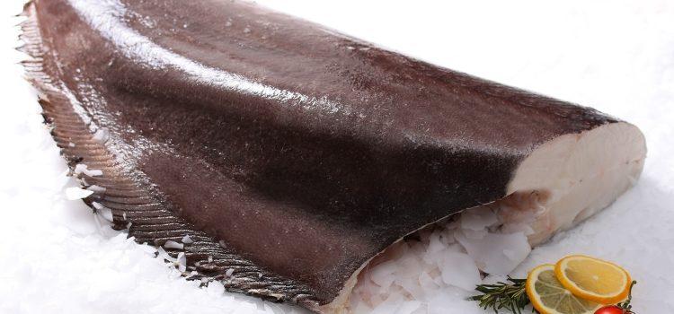 Польза и вред палтуса для здоровья человека, области применения, рецепты блюд