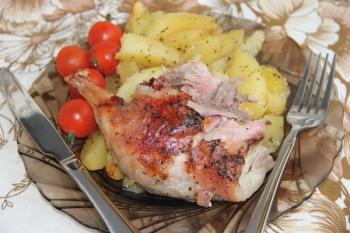 Мясо нутрии: польза и вред лоя организма, рекомендации по употреблению