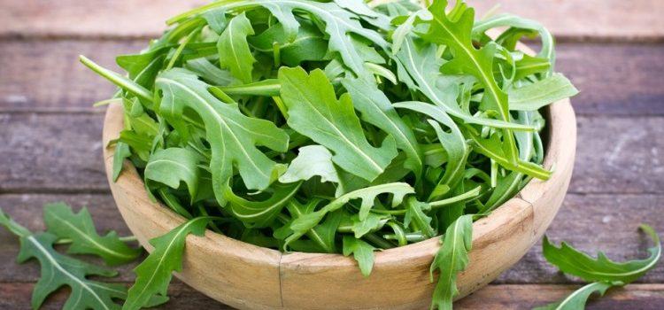 Как выбрать салат руккола - польза и вред продукта