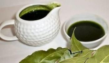Каковы противопоказания и вред лаврового листа и в чем заключаются польза и лечебные свойства растения