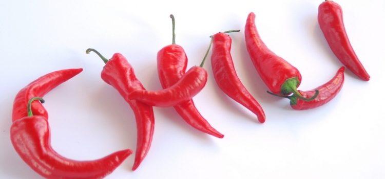 Польза и вред перца чили, противопоказания, способы применения