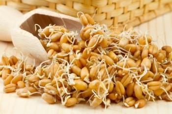 Полезные и лечебные свойства пророщенной пшеницы