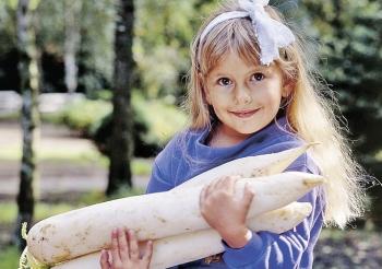 Дайкон: польза и вред для детей, полезные свойства и противопоказания