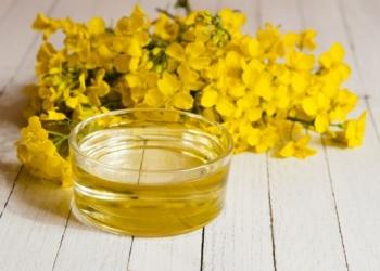 Польза и вред рапсового масла для детей