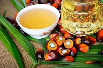Чем полезно пальмовое масло, в том числе для организма мужчин и женщин