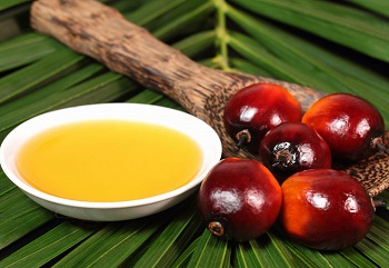 Какими ценными веществами богато пальмовое масло