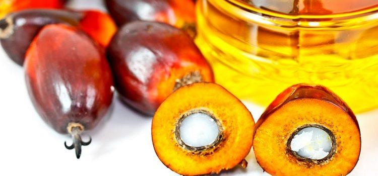 О пользе и вреде пальмового масла для здоровья мужчин, женщин и детей