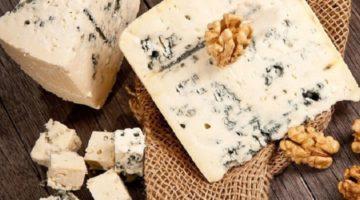 О пользе и вреде сыра с плесенью для организма мужчин, женщин и детей