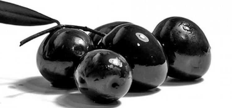 Польза и вред маслин для организма человека - рассмотрим основные моменты