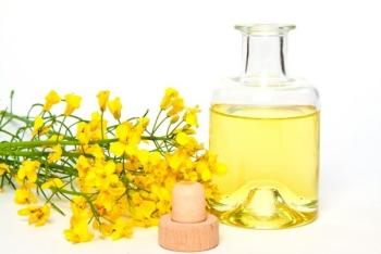 Польза и вред рапсового масла, применение для похудения
