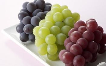 Польза и вред винограда для организма, сорта и их особенности