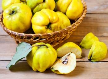 Айва: полезные свойства для организма человека, возможный вред и противопоказания
