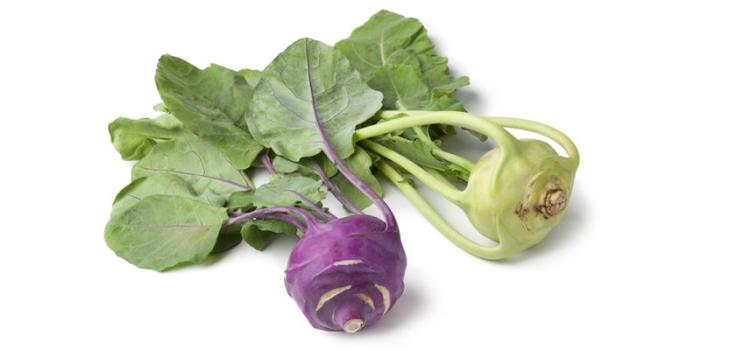 Кольраби: польза и вред, области применения, рецепты приготовления