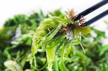 Рекомендации по употреблению спирулины и химический состав водоросли