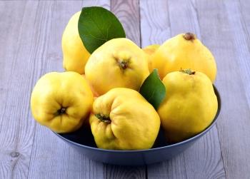Айва: польза и вред, полезные свойства, состав, калорийность, гликемический индекс