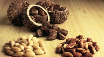 Бразильский орех: польза и вред, полезные свойства и противопоказания