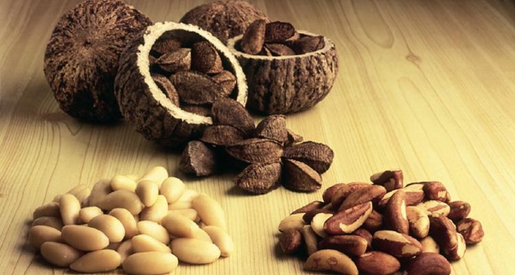 БРАЗИЛЬСКИЙ орех польза и вред советы и инструкции 23:09 2019