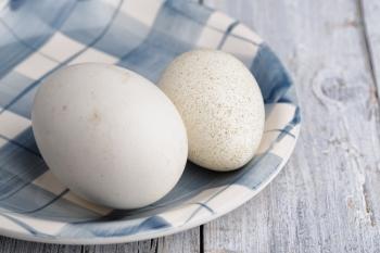 Противопоказания к употреблению гусиных яиц