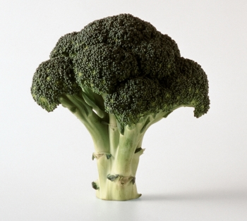 Капуста брокколи: советы по выбору качественного продукта