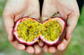 Маракуйя: полезные свойства, польза для мужчин, женщин и детей