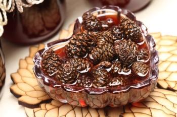 Варенье из сосновых шишек: польза и вред, полезные свойства для организма