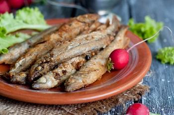 Чем полезна рыба мойва, полезные свойства для организма