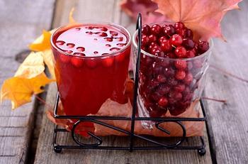Чем полезны ягоды брусники для здоровья человека - основные моменты