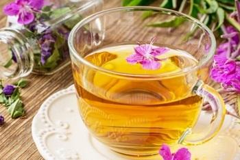 Использование растения медуница в лечебных целях - народные рецепты