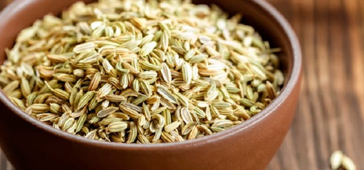Лечебные свойства и противопоказания семян укропа для здоровья человека