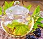 Листья смородины - лечебные свойства и способы приготовления напитка