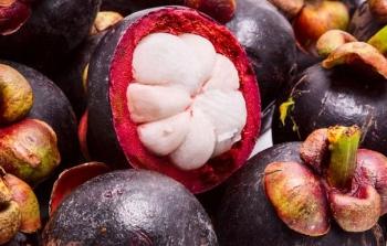 Фрукт мангустин: полезные свойства, применение в народной медицине